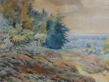 Emma KRIBBE (1854-1917) - Aquarell:  NORDDEUTSCHE LANDSCHAFT, MISCHWALD, HEIDE