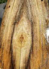 Spalted Myrtle guitar wood bass craft exotic figured lumber for luthier yellow