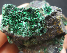 83g AAA green Atacamite&colorful Bornite crystal minerals specimens #China!