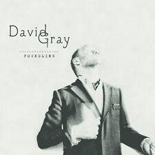 David Gray - Foundling [New CD]