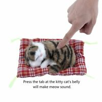 Mini Lovely Simulation Animal Doll Plush Sleeping Cats with Sound Kids Toy yL