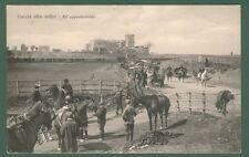 CACCIA ALLA VOLPE. Cartolina d'epoca viaggiata nel 1909. Ottima conservazione.