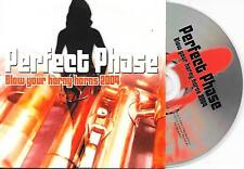 PERFECT PHASE - Blow your horny horns 2004 CD SINGLE 3TR House Holland RARE!
