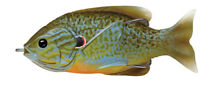 Live Target Sunfish Hollow Body SFH90T551 Natural Blue Pumpkinseed Topwater Lure