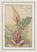 CICELY MARY BARKER c1930 LORDS-AND-LADIES FAIRY Painting Vintage Art Book Print