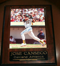 OAKLAND A'S JOSE CANSECO 8X10 AUTOGRAPHED & FRAMED PICTURE