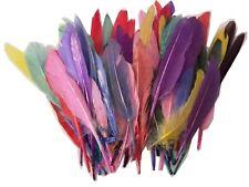 Bastelfedern verschiedene Farben 100 Stück