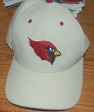 Arizona Cardinals Mens Stitched Logo NFL Twins Enterprise Hat Fitted size 7 1/4