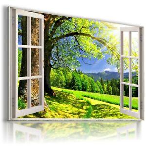 GREEN FIELD TREES PARK 3D Window View Canvas Wall Art  W522 UNFRAMED-ROLLED
