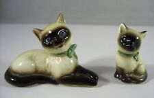 2 kleine Siamkatzen - Katzen von Goebel cat