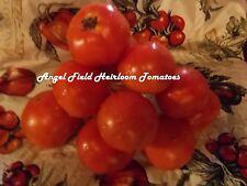 Legend Heirloom Tomatoes Seeds 20 Organic Garden Angel Vegetable Seeds