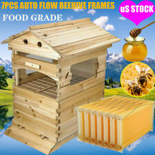 7 Pcs Flowing Honey Beehive Frames Beekeeping Wooden House Up Box Set