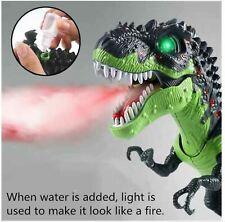 Light Up T-Rex Walking Dinosaur Led Toy Fire Breathing Mist Spray Dragon Sounds