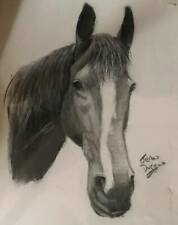 PENCIL PRINT HORSES HEAD SIGNED BY JEAN DUFFUS OF GLASSGOW 16.5X11.75 INCHES