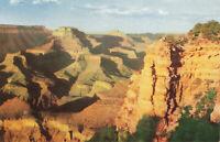 Postcard Grand Canyon National Park Arizona Fred Harvey