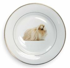 Flower in Hair Guinea Pig Gold Rim Plate in Gift Box Christmas Present, GIN-5PL