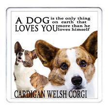 Welsh Corgi Cardigan cane Coaster Tappetino Tazza di corrispondenza disponibili può essere personalizzato
