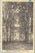 64411 - CARTOLINA d'Epoca - PAVIA provincia :  CHIGNOLO PO  1924