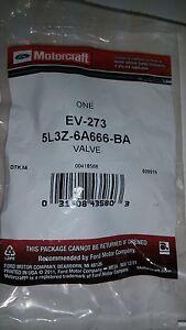 GENUINE Motorcraft EV-273 PCV Valve 5L3Z-6A666-BA