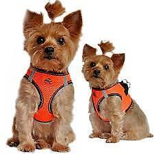 American River Top Stitch Dog Harness Iridescent Orange XXXL