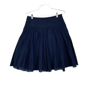 INC International Concepts Skirt 2 Navy Blue A Line Lined Side Zip