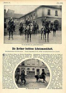 Polizei Lt. Karl Granztkow Die Berliner berittene Schutzmannschaft Pferde v.1906