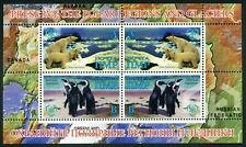 Protection of the polar regions and glaciers. Penguins. Polar Bears Transnistria