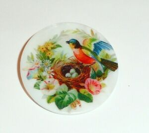 """Pretty Bird At Nest w/ Eggs & Flowers Mother of Pearl MOP Shank Button 1+3/8"""""""
