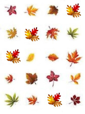 Fall Leaves Waterslide Nail Decals/Nail Art