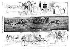 Brooklyn Jockey Club Handicap  - Castaway Wins  -  1890 Antique Print