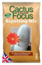 CACTUS FOCUS REPOTTING MIX (2 LITRE) FOR CACTUS PLANTS & SUCCULENTS