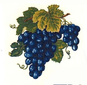 Blue Grape Cluster Grapes Select-A-Size Waterslide Ceramic Decals Xx
