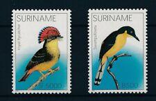 [SU1162] Suriname Surinam 2002 Birds  MNH