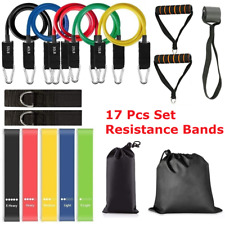 17 Pcs Fitness Resistance Bands Set Pull Rope Set Gym Fitness Strength Training