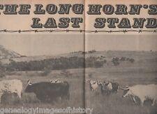 Texas Longhorn Cattle History - Their Last Stand+Bertillion,Chishholm,Coronado