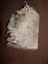 30 Pieces of Birch Bark Bushcraft