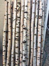 Decorative Logs Birch Poles By Posh Logs fantastic