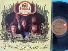 Tole Puddle ORIG OZ Promo LP A breath of fresh air NM '76 Folk Psyche