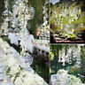 Hanging Clear Glass Plant Pot DIY Bauble Fillable Sphere Tea Light Candle Holder