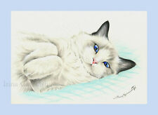 Ragdoll Gato impresión Lindo Por Irina garmashova