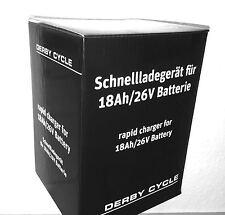ORIGINAL Derby Cycle Schnellladegerät Li-Ionen Akkus 18-24AH Panasonic E-Bikes