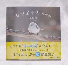 Shima-Enaga Photo Book and 3 Post Cards Rei Ohara Kawaii