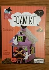 Bright Minds by Nicole Haunted House Foam Kit NIB