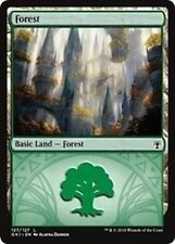 ***10x Forest (Selesnya)*** MINT Guilds of Ravnica Kits GRN MTG Magic Cards