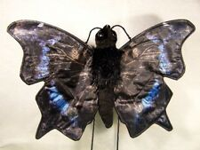 "MOURNING CLOAK BUTTERFLY Puppet # FG7243 ~ 7""w ~ FREE SHIP/USA ~Sunny Puppets"