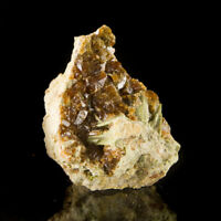 "2.9"" Flashy Brilliant DarkRed GROSSULAR GARNET Crystals Coyote Front CA for sale"