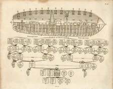 1802  Arrangement Of Cannon On Ship's Deck Paternal And Maternal Table Of Descen