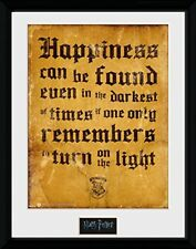 Harry Potter Happiness Can Be Wizarding World Framed Poster Print 40x30cm