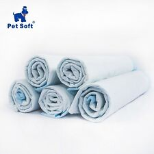 Super Absorbent Pet Diaper Training Pee Pads Clean Wet Mat For Dog Cats Healthy