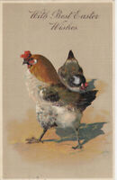 Rooster and Hen~Antique Best Easter Wishes Embossed  Postcard-p127